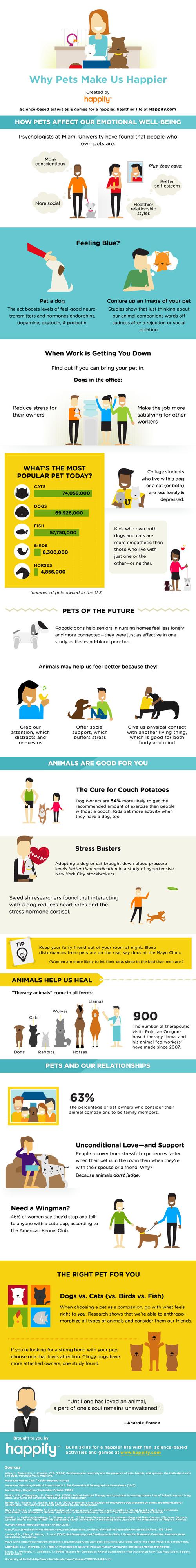infografik - evcil hayvanlar bizi nasıl mutlu ediyor